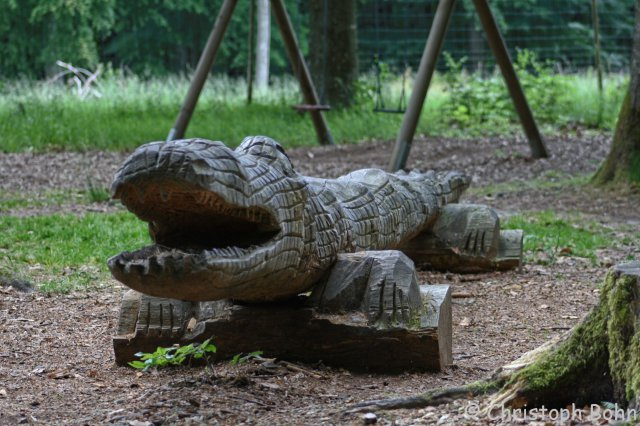 Wildfreigehege Wildenburg 15.06.2014